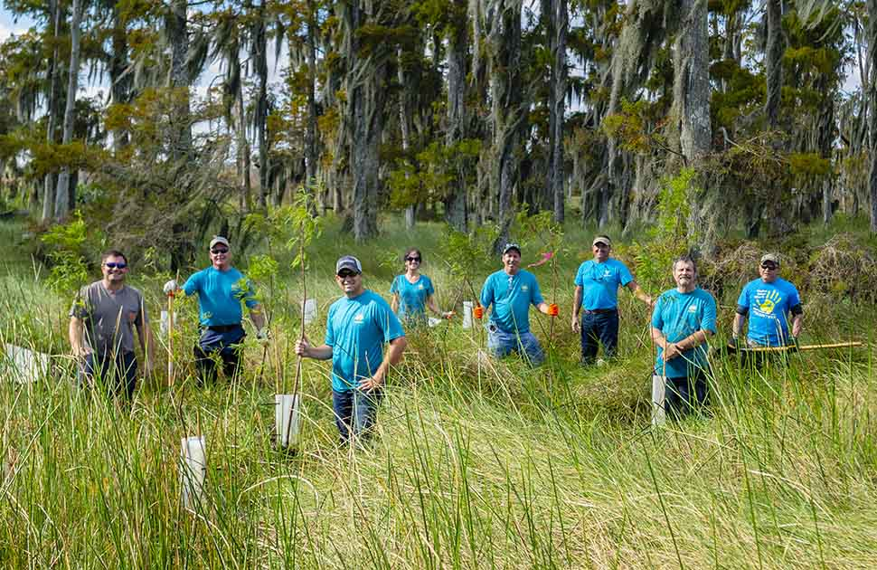 Restoring Critical Wetlands