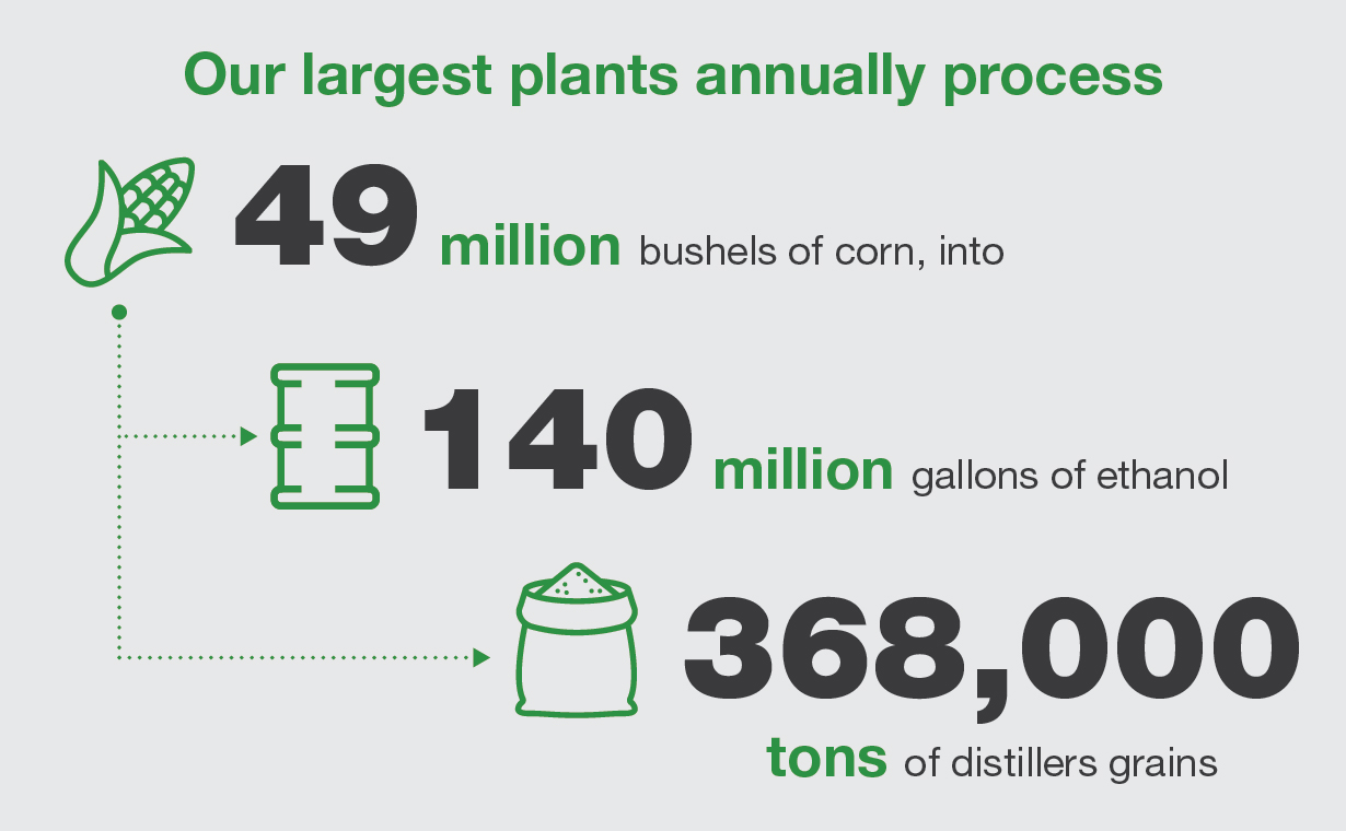 Ethanol Production Infographic