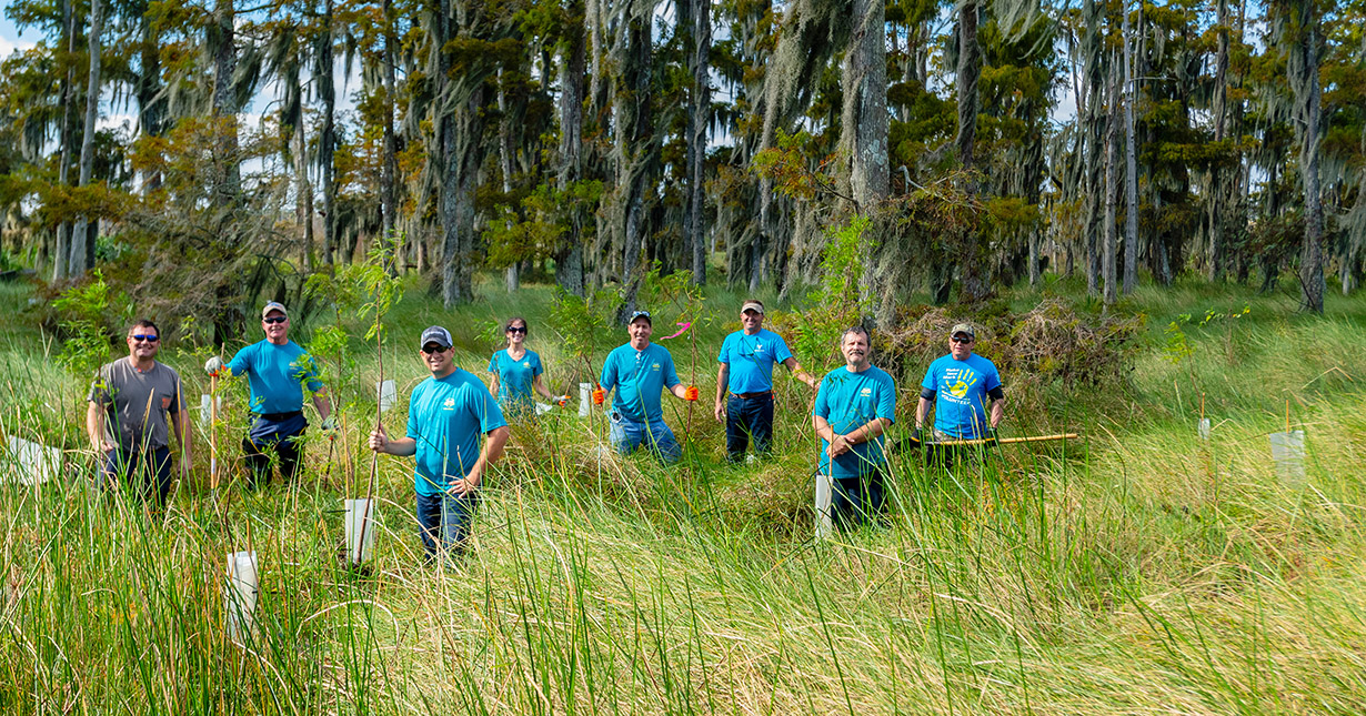 Valero St. Charles volunteers plant trees in swamp