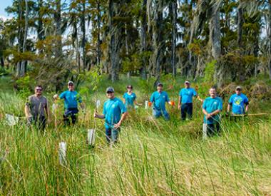 Valero St. Charles Refinery volunteers plant trees in swamp